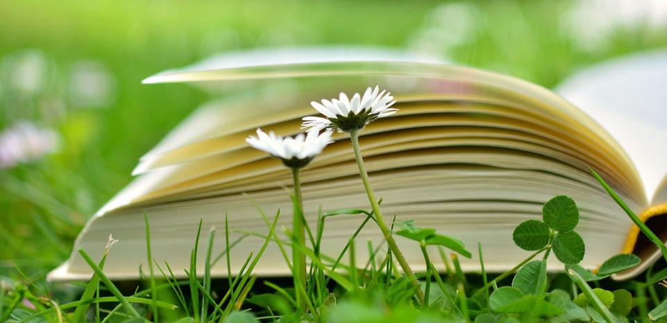 Aktuelle Literatur zu Neurobiologie, Psychologie, Philosophie und deren Wechselwirkungen