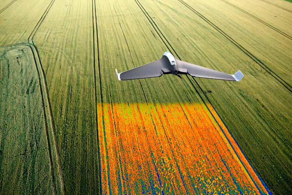 Agricultura de Precisión con Drones, el Futuro de la Agricultura en México y el mundo