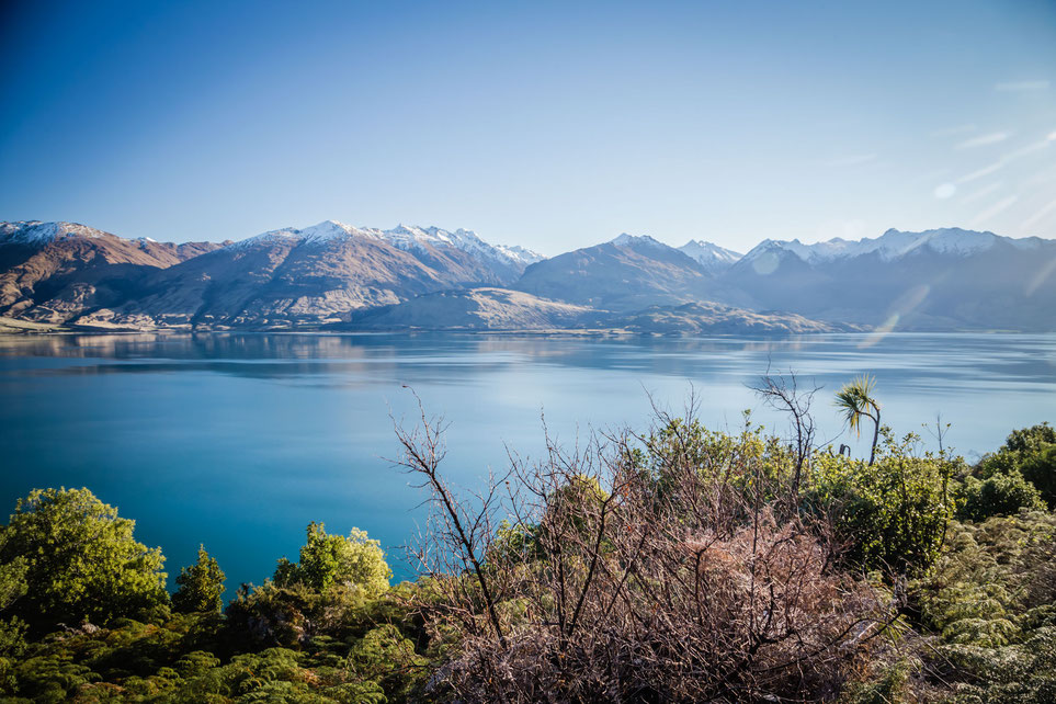 Lake Wanaka from the Neck.