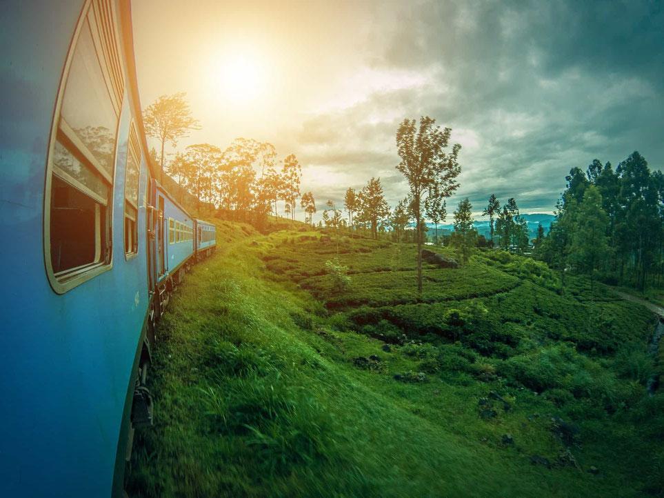 Traumhafte Aussicht während der Zugfahrt von Colombo bis Dambulla auf Sri Lanka