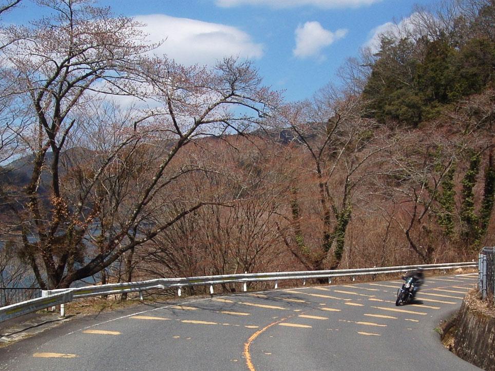 タイトなコーナーが連続する周回コース。湖面を眺める余裕はないかも