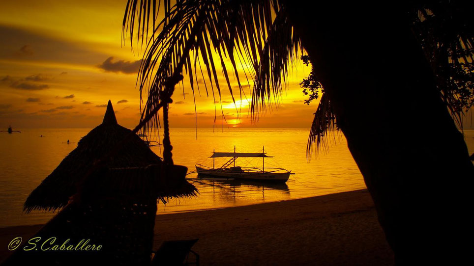 Easy Diving and Beach Resort Sipalay