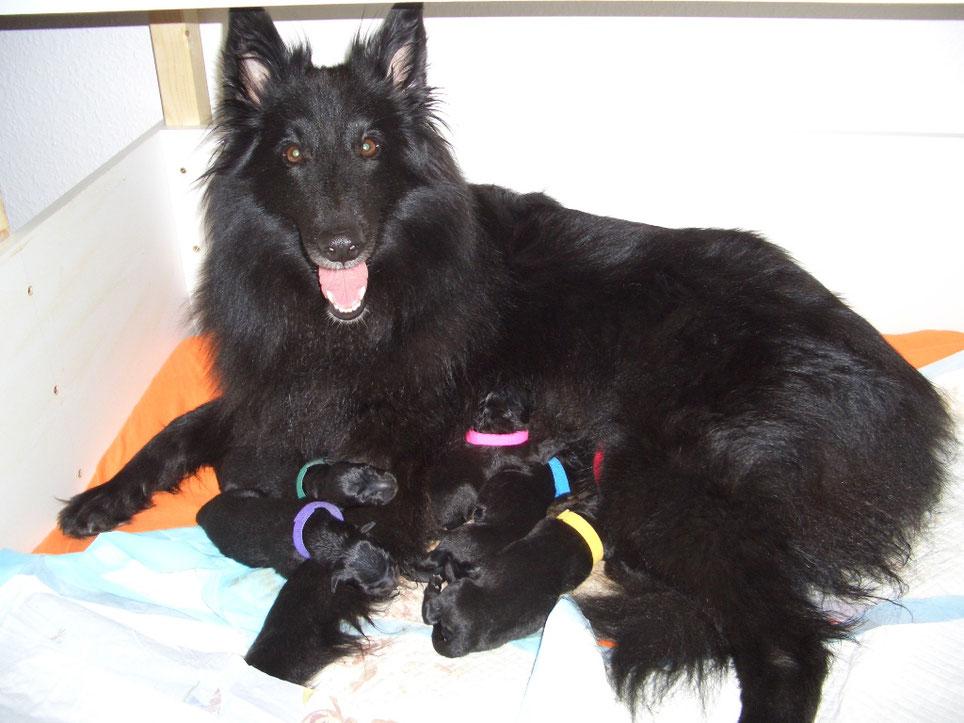 Akira mit ihrer Rasselbande
