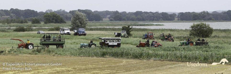 Auch im Achterlander Sumpfgebiet gibt es kein Halten für die kräftigen Motoren der Lieblinge unserer Usedomer Schlepperfreunde. Foto: Florian Büh