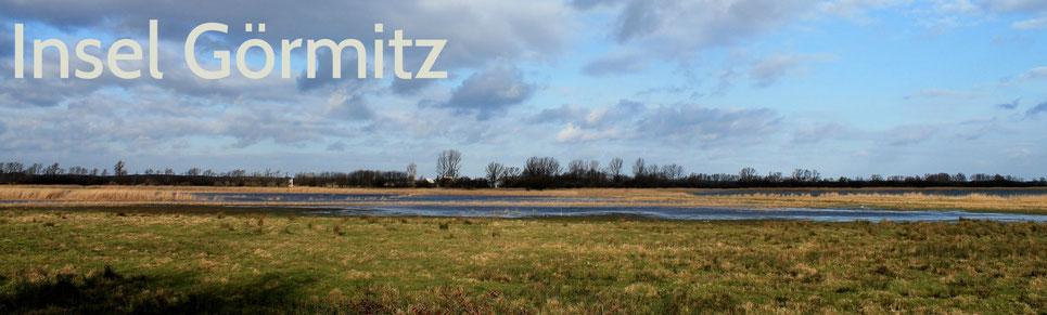 Naturparadies Insel Görmitz  - Foto: Jordsand.de