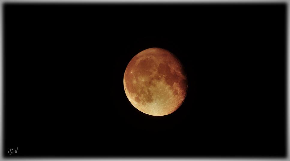 Der Mond - ein vertrauter Begleiter der Erde