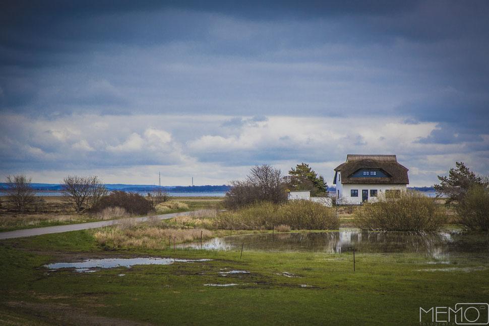 Insel Hiddensee, Ostsee, Balticsea, Vitte, Deutschland