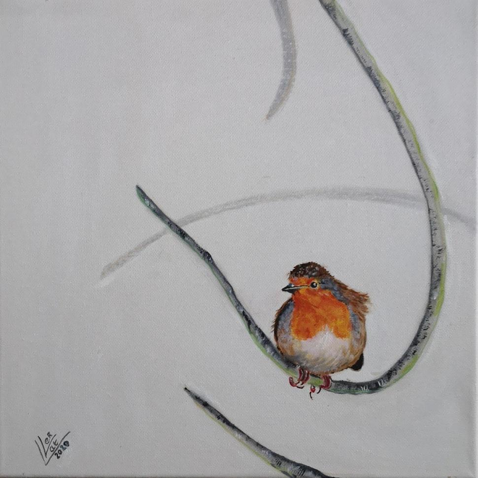 10. Robin curly Suus 30x30 cm