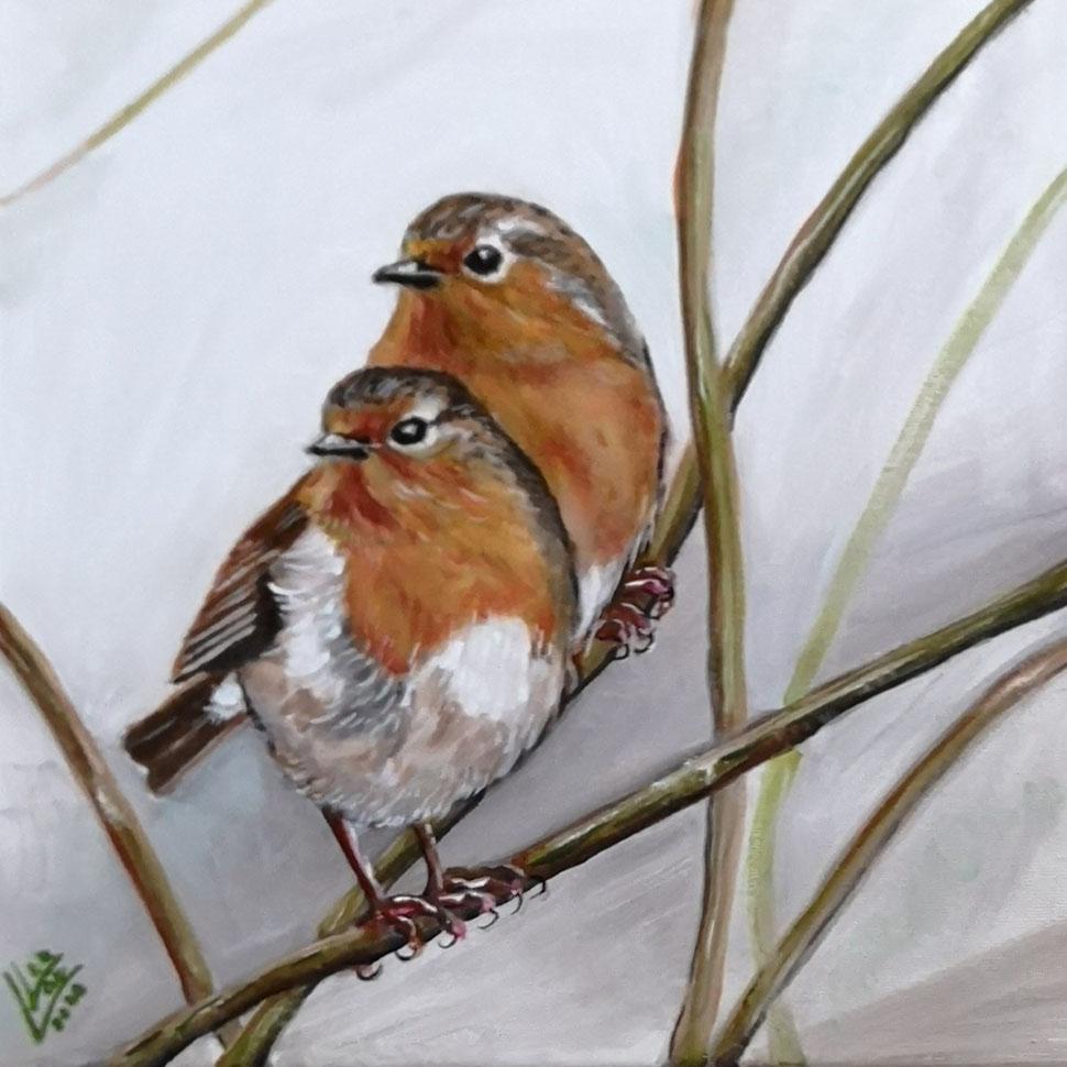 13.Robin together 30x30 cm