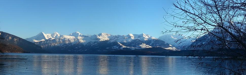 Thunersee mit Alpen des Berner Oberlandes