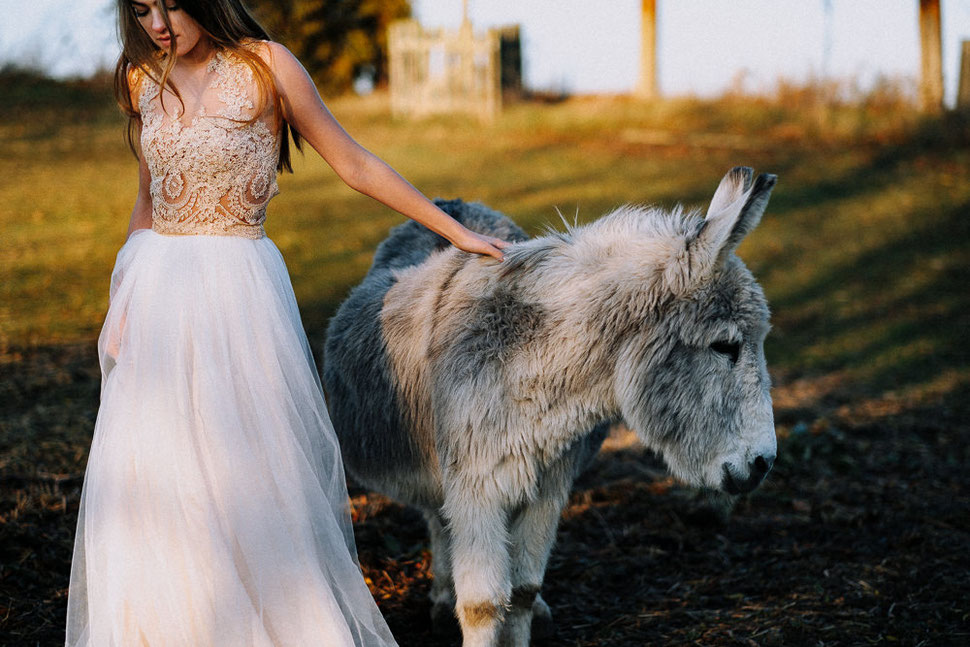 Hochzeitsfotograf in Magdeburg, Thomas Sasse, Fraeulein Liebe Vintage Kleid, Esel Shooting, Berni der Esel und Monique