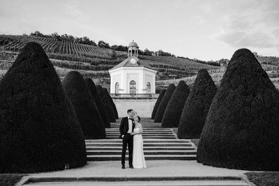 Hochzeit, Magdeburg, Thomas, Sasse, Hochzeitsfotograf, Trauung, Standesamt, Reportage, Schloss Wackerbarth