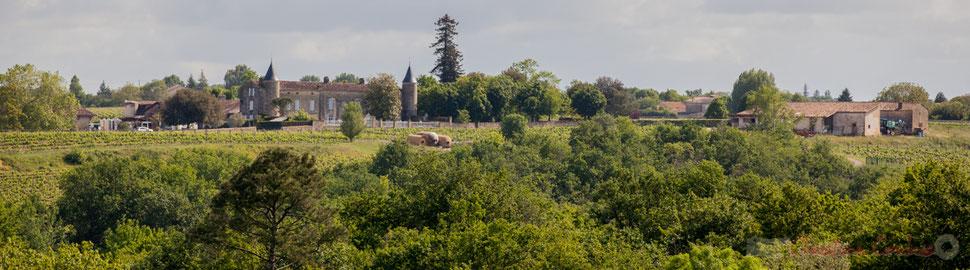 Château du Coureau, Haux, Gironde