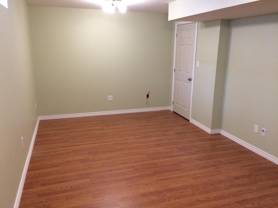 Complete basement Reno