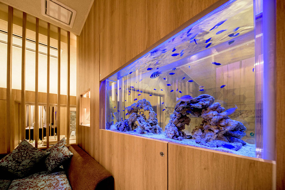 神戸のホテル様に水槽を設置しました