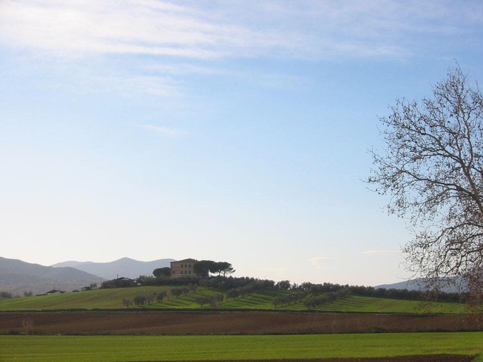 Blick auf ein prächtiges Toskana-Anwesen