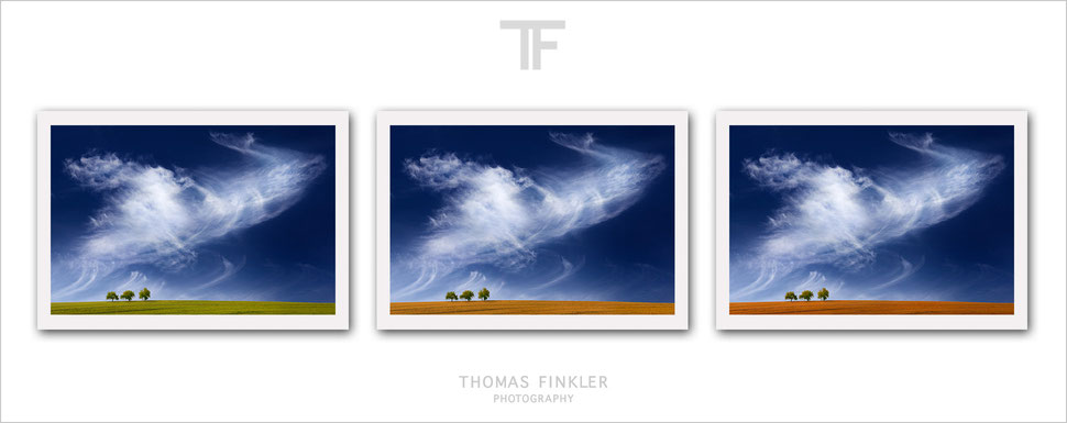 Buy, photography, fine art, 3 piece, wall art, triptych, landscape, nature, vision, color, colorful, vibrant, prints, high end, art, series, online