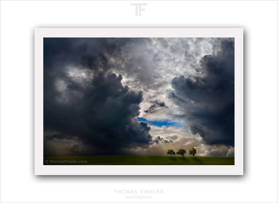 Buy, photography, nature, landscape, tree, cloudscape, color, limited edition, composite, art prints, fine art prints, wall art prints, online