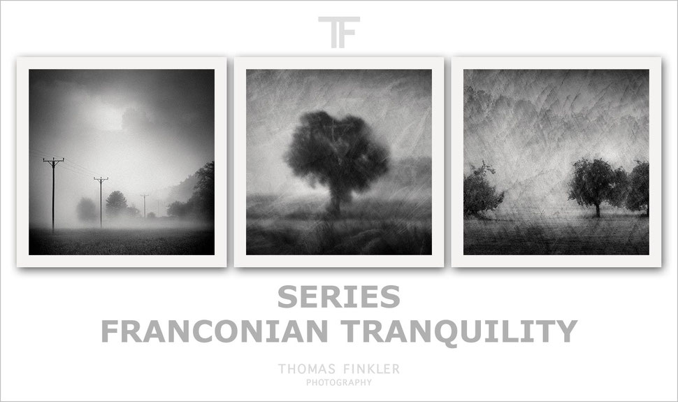 Fine art, photography, black and white, monochrome, nature, poetic, atmospheric, tree, series, german, germany, limited edition