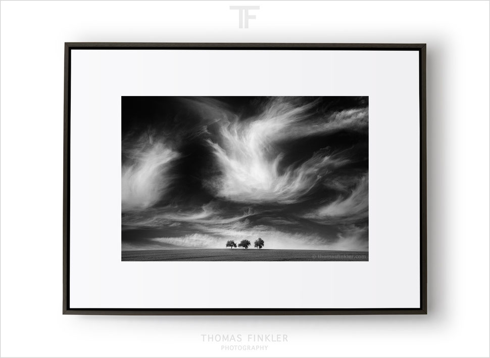 Fine art photography, black and white, wall art, vision, landscape, nature, trees, clouds, breathtaking, exceptional, framed, prints, for sale