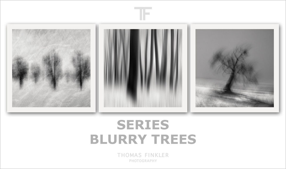 Fine art, photography, black and white, monochrome, abstract, nature, forest, trees, series, poetic, impressionist, limited edition