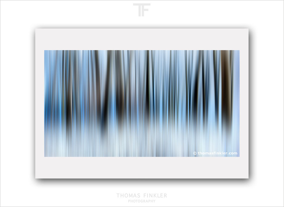 Art photography, photographic art, fine art, wall art, abstract nature, abstract forest, blue, winter, snow, limited edition, prints, for sale