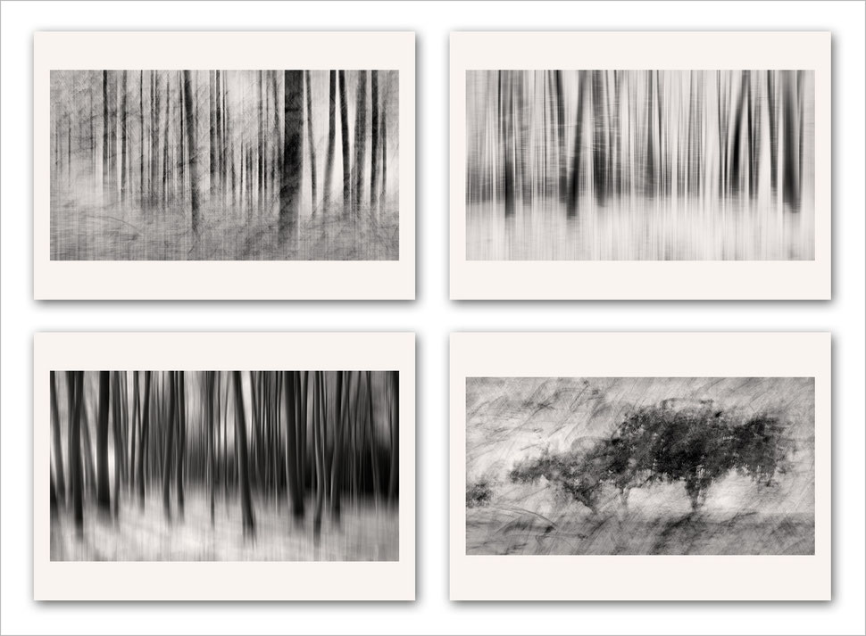 Fine art photography, black and white, vision, composite, post-processing, award winning, awarded, abstract nature, abstract trees