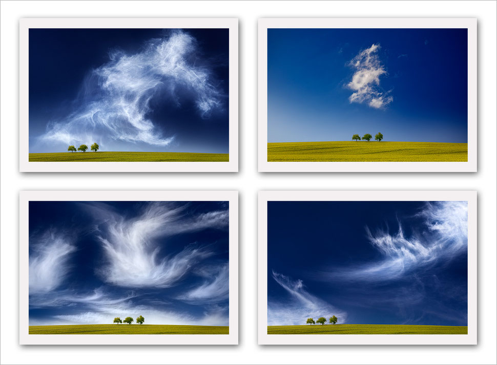 Landscape photography, nature photography, fine art, vision, composite, post-processing, award winning, color, trees, cloudscape