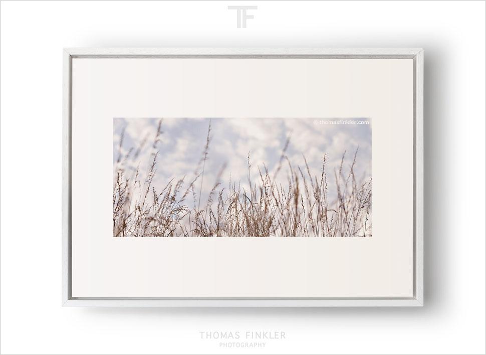 """Grasses 04"" (50x35 cm)"