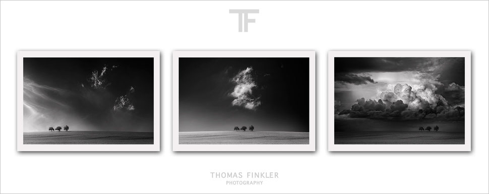 Buy, photography, fine art, monochrome, 3 piece, wall art, triptych, landscape, nature, trees, clouds, limited edition, art, prints, online