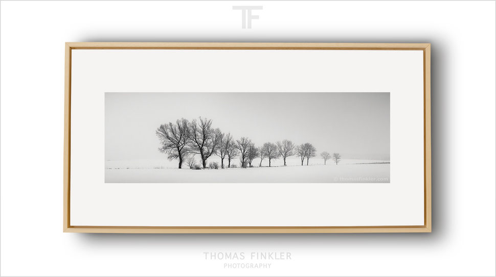Panoramic, panorama, fine art, photography, print, monochrome, black and white, minimalist, art, framed, prints for sale, buy prints