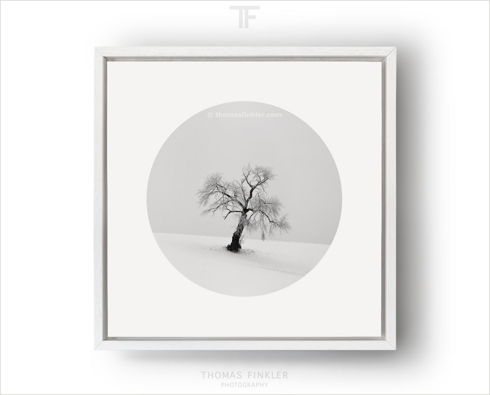 Buy monochrome art photography, framed limited edition prints, limited edition fine art prints, minimalist wall art, framed square prints