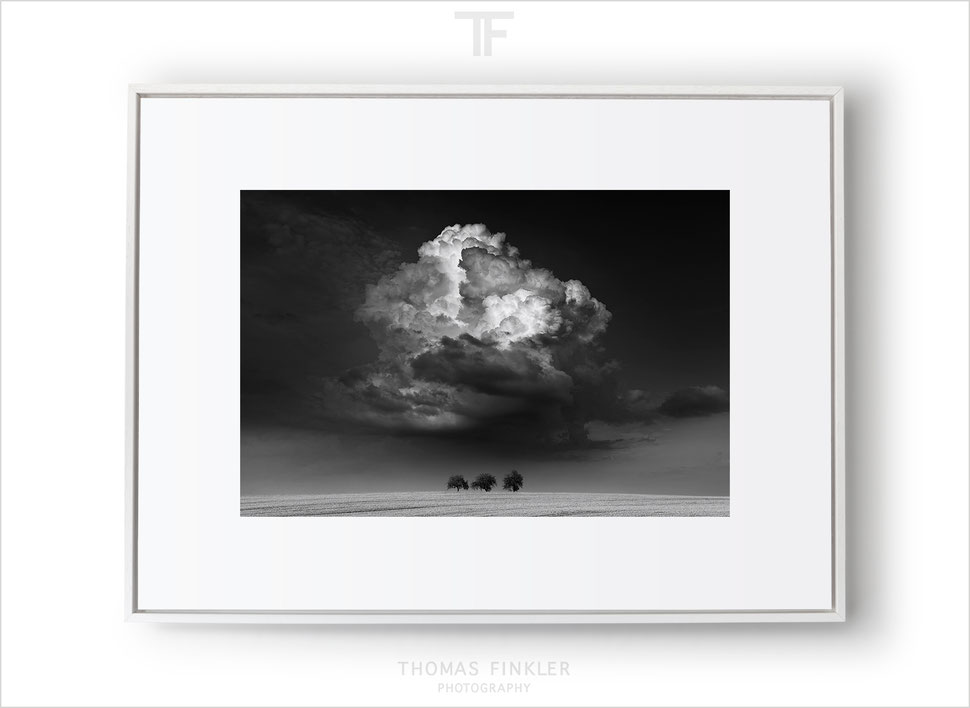Fine art black and white landscape photography, framed limited edition prints, fine art prints, cloudscape photography, minimal, dramatic sky, grain field, 3 trees
