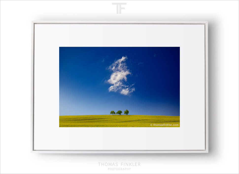 Fine art nature and landscape photography, minimal wall art, cloudscape, blue, sky, green, trees, field, minimalist, limited edition
