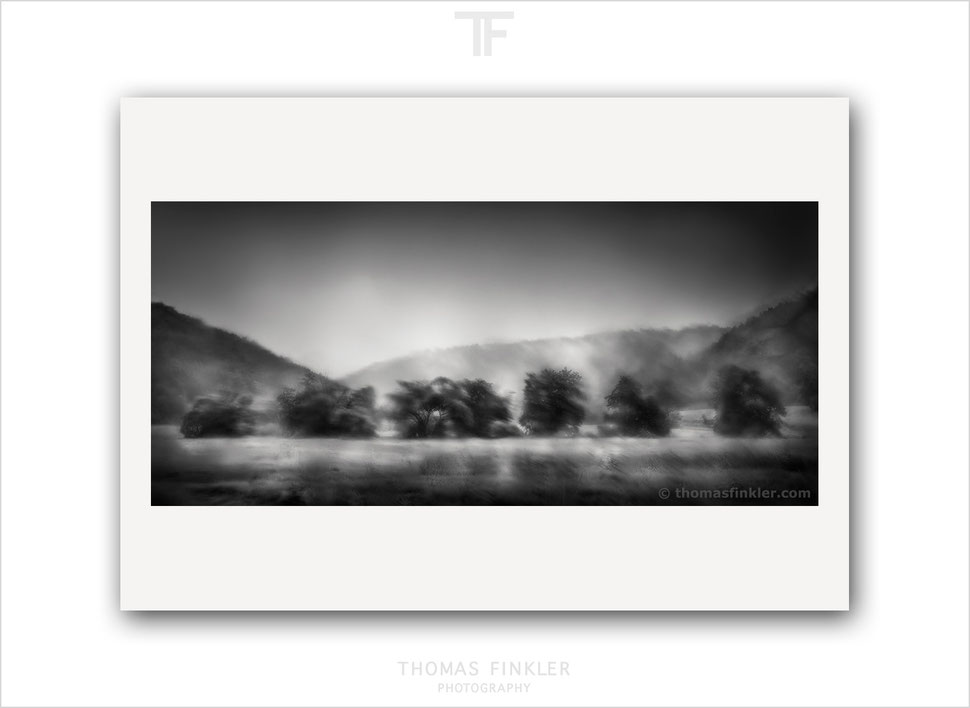 Fine art, photography, print, black and white, monochrome, tree, abstract, impressionist, atmospheric, prints for sale, buy prints, online
