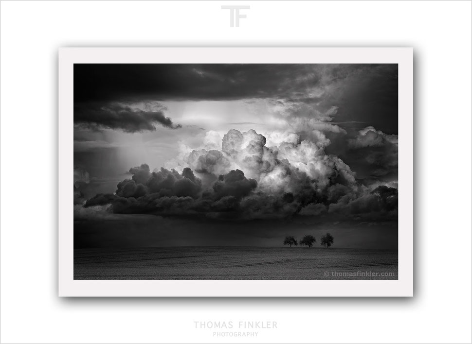 Buy, photography, art, black and white, monochrome, fine art, nature, landscape, cloudscape, trees, award winning, archival, prints