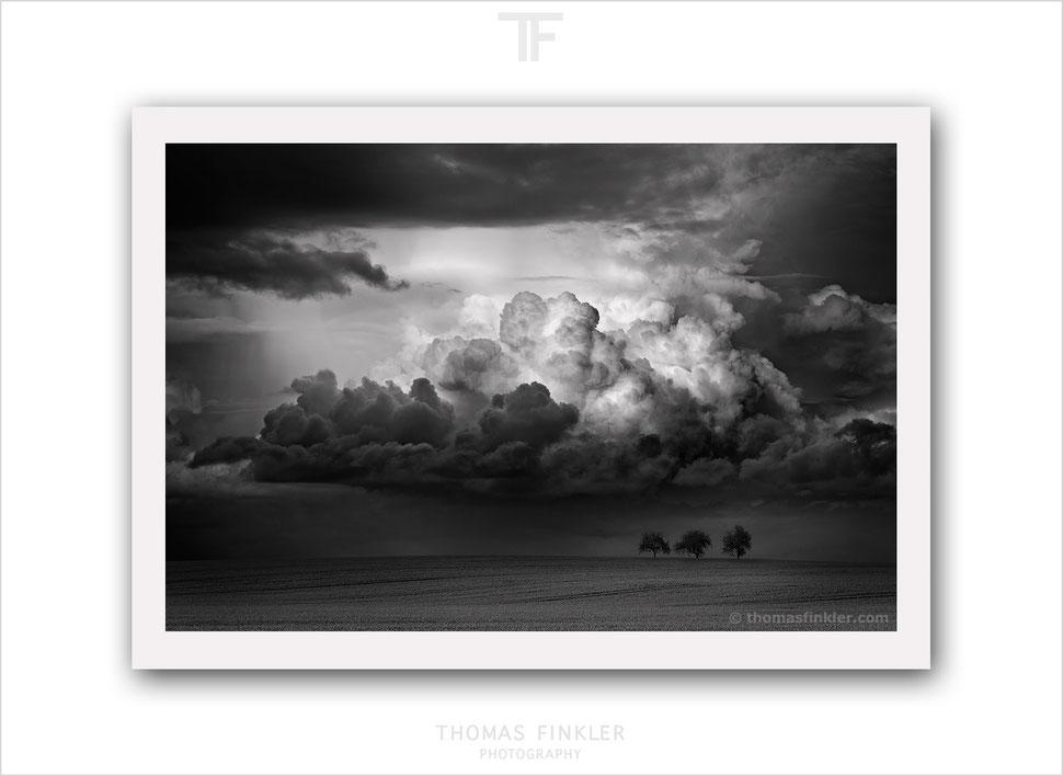 Buy, photography, art, black and white, monochrome, fine art, nature, landscape, cloud, cloudscape, trees, award winning, archival, prints