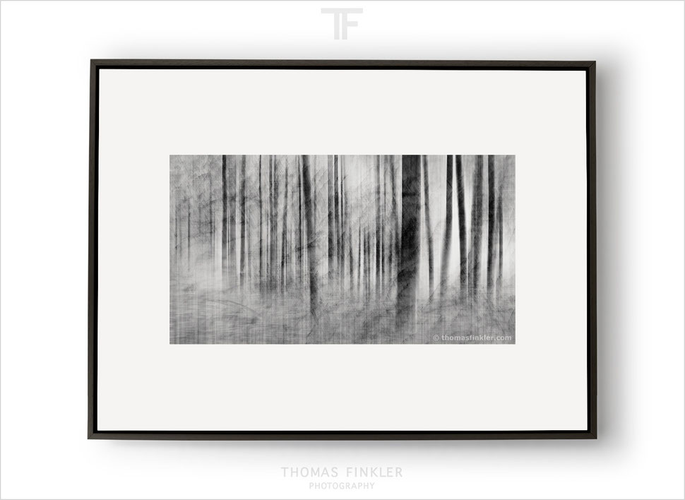 Buy prints, fine art, photography, abstract, nature, trees, forest, woods, impressionist, modern, art, prints for sale, framed, online