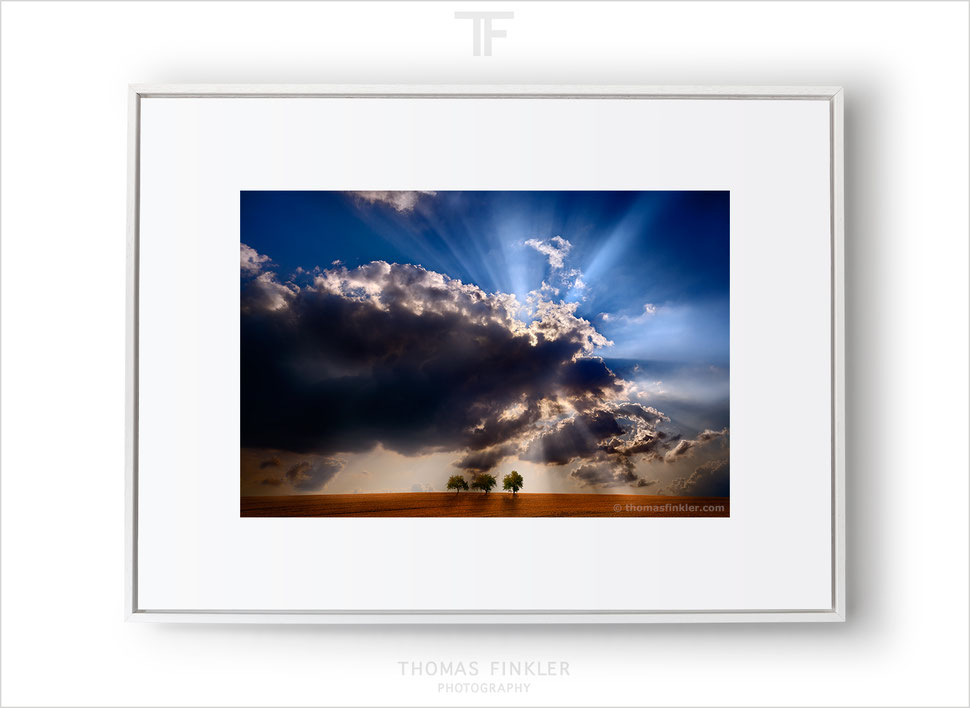 Fine art nature and landscape photography, stunning wall art, cloudscape, trees, dramatic, spectacular, sky, rays of sunlight, limited edition