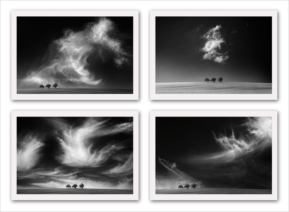 Fine art photography, black and white, vision, composite, post-processing, award winning, awarded, landscape, nature, trees, cloudscape