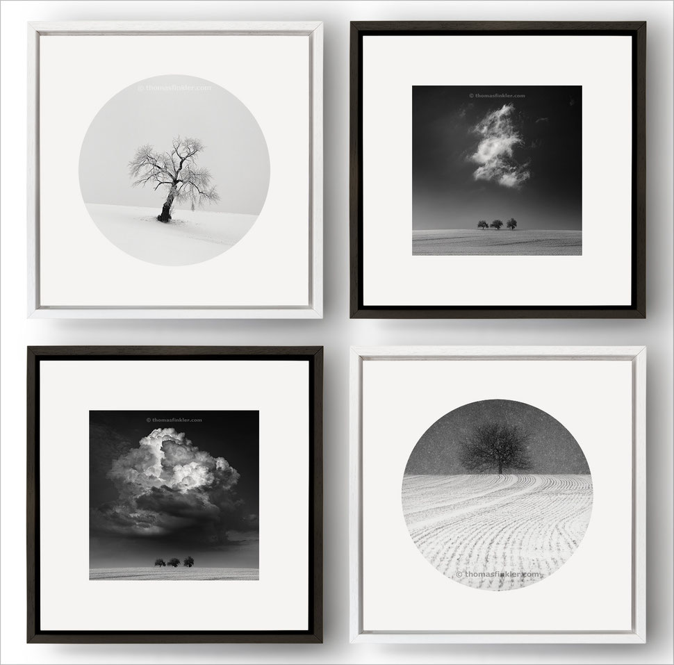 Photography, black and white, monochrome, wall art, fine art, nature, landscape, minimalist, limited edition, square, framed, prints, for sale