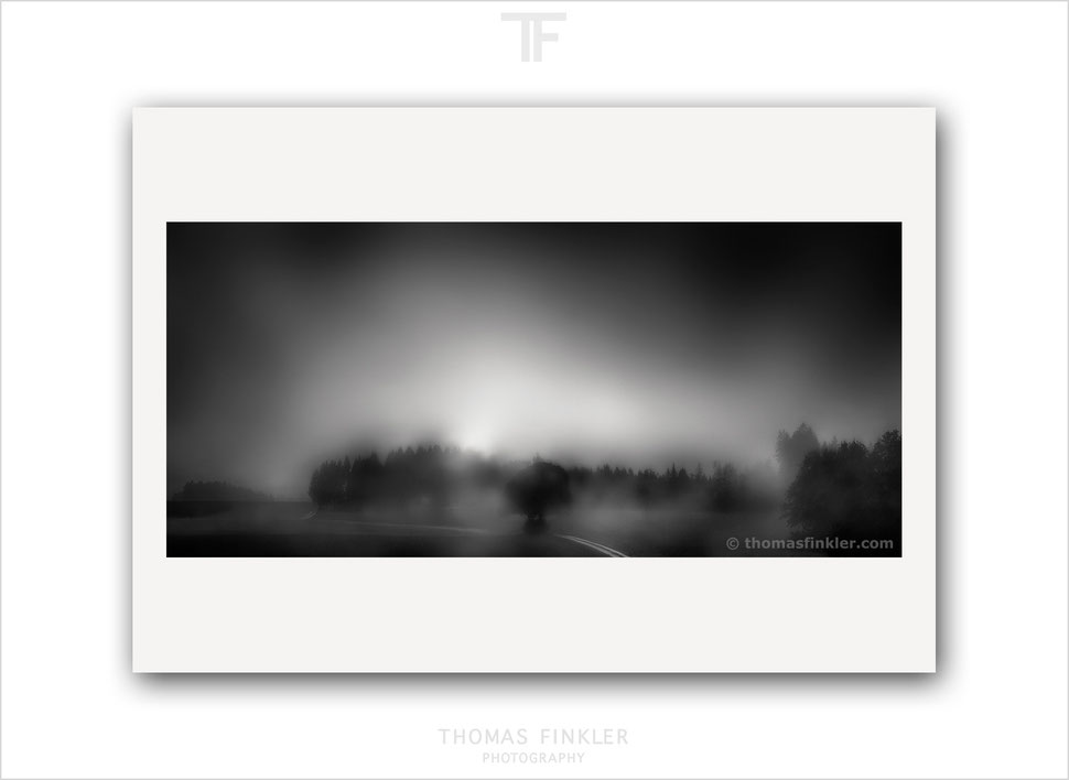 Fine art photography, art photography, photographic art, abstract, landscape, tree, trees, photographer, artist, german, germany