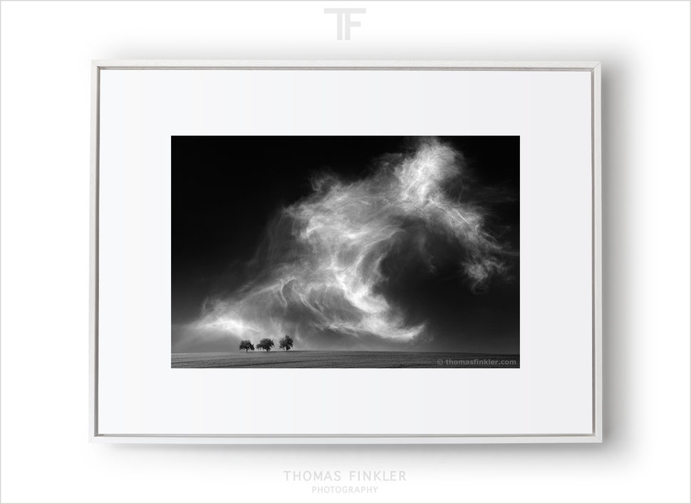 Fine art black and white photography, wall art, spectacular cloudscape, sky, minimal landscape, minimalist, trees, dramatic, limited edition