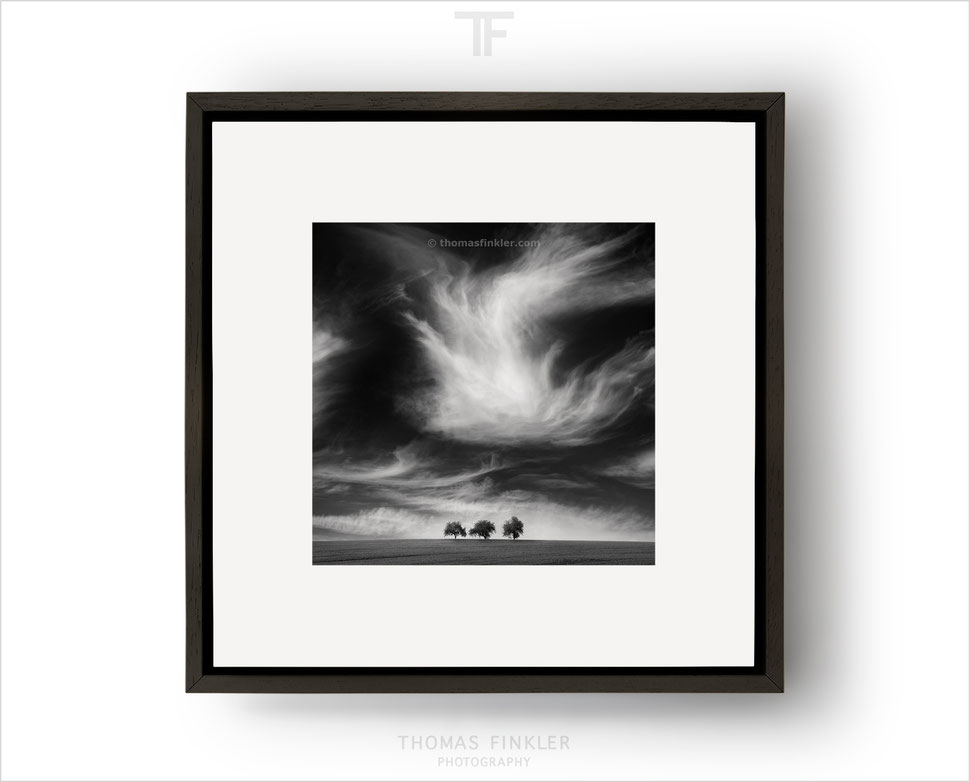 Fine art black and white photography, framed limited edition prints, limited edition fine art prints, wall art, affordable, square, for sale