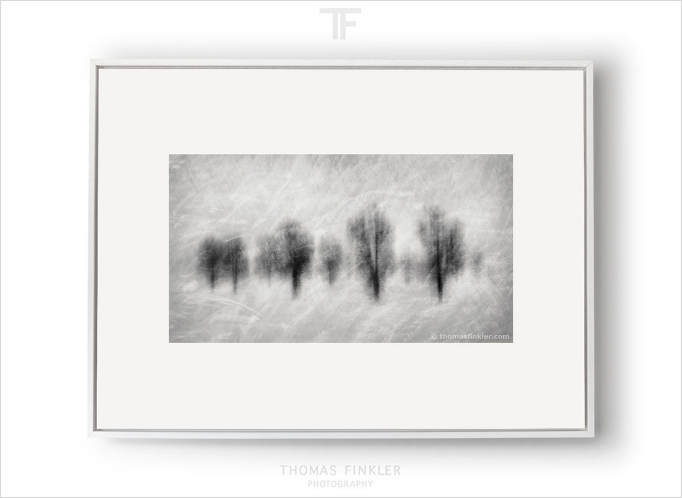 Fine art, photography, print, poetic, abstract, impressionist, modern, contemporary, minimalist, art, prints for sale, buy prints, framed
