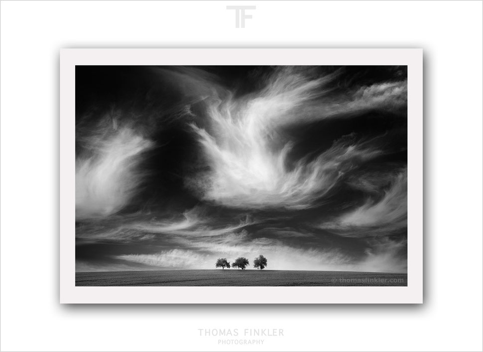 Art photography, photographic art, fine art photography, black and white, wall art, nature, landscape, trees, clouds, sky, prints, for sale