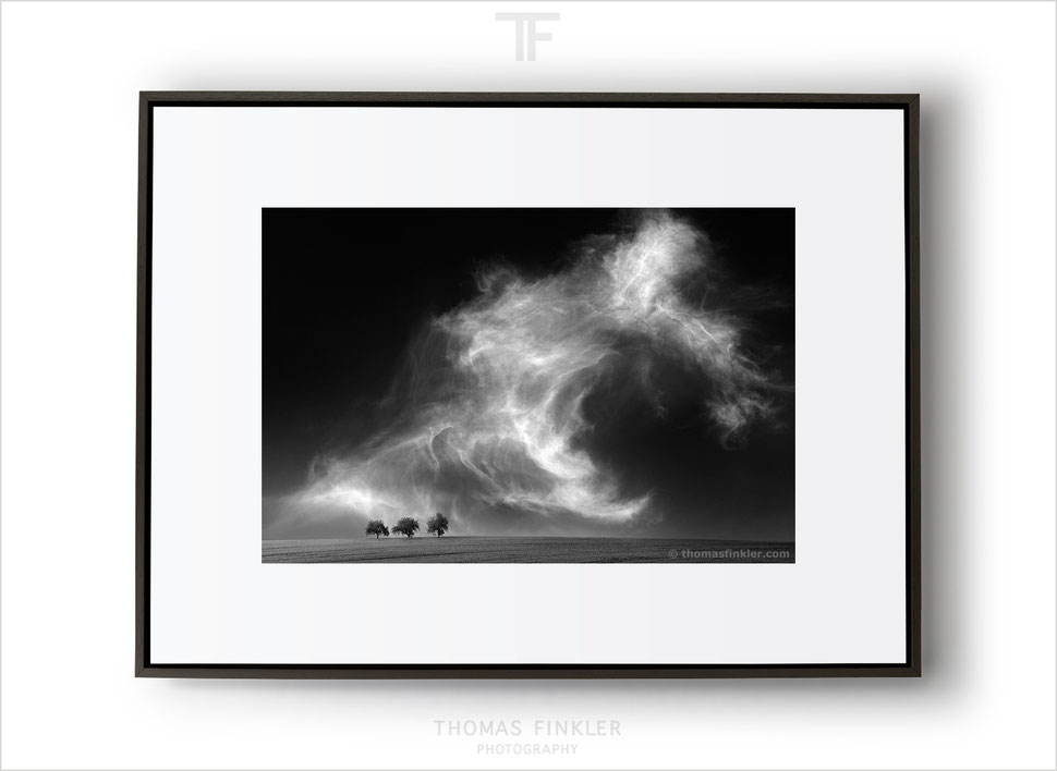 Fine art photography, black and white, nature, wall art, stunning, minimal, cloudscape, sky, trees, limited edition, framed, prints, for sale