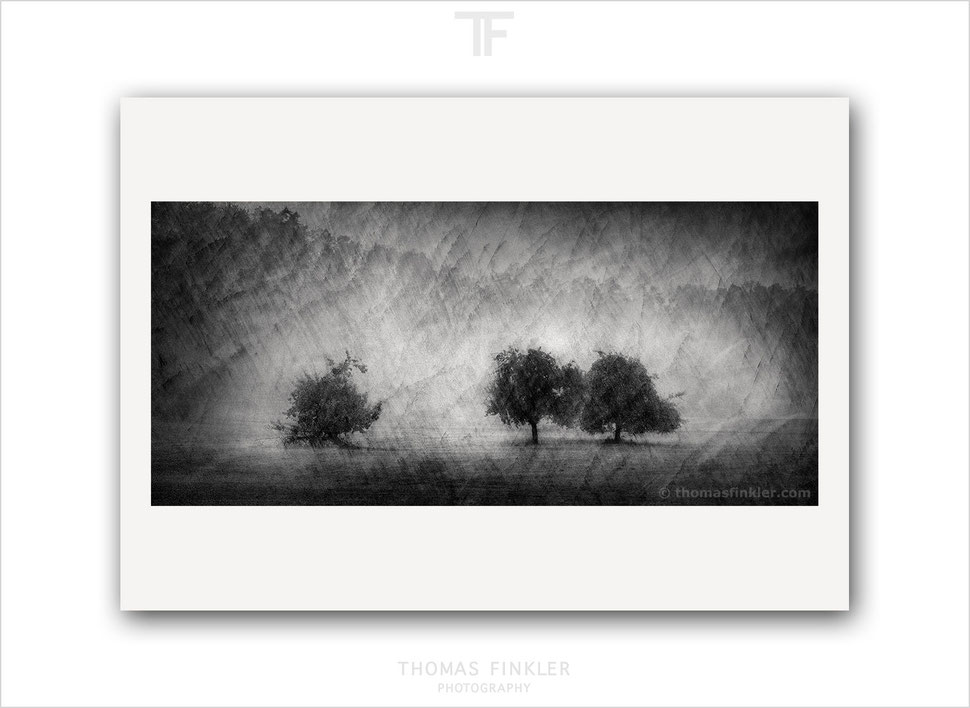 Fine art, photography, print, black and white, monochrome, modern, contemporary, poetic, creative, art, prints for sale, buy prints, online