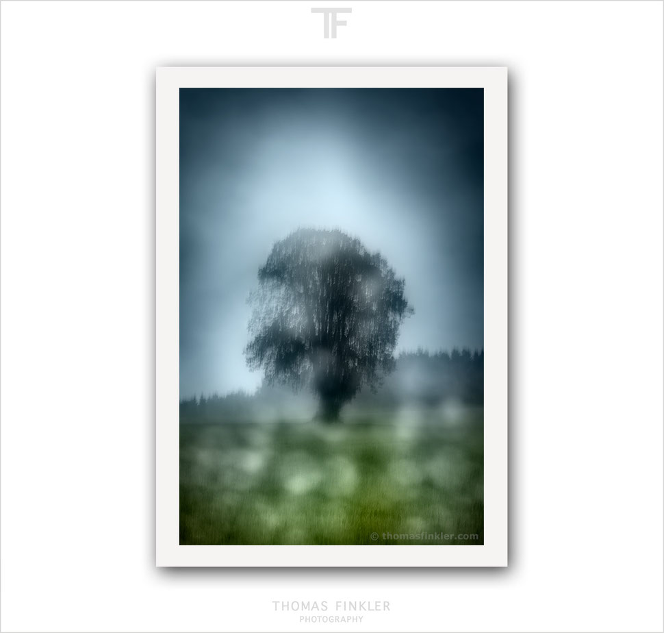 Art, fine art, photography, print, abstract, tree of life, atmospheric, impressionist, blurry, tree, prints for sale, buy prints, online