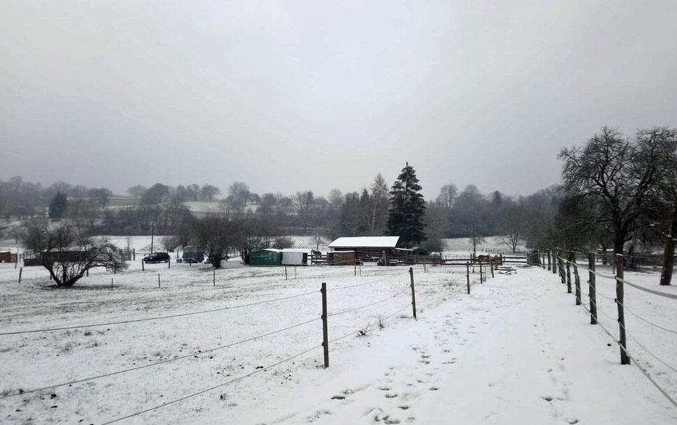16.12.2018 - der erste Schnee!!! ❄️